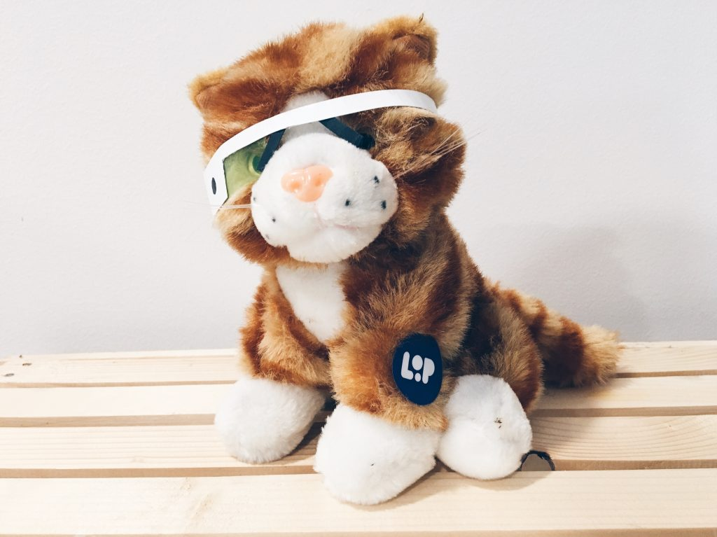 Picture of our very own Product Hunt style cat called Loopy.